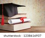 academic college degree... | Shutterstock . vector #1238616937