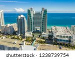hollywood  fl  usa   november... | Shutterstock . vector #1238739754