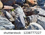 close view of large boulders...   Shutterstock . vector #1238777227