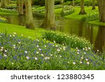 Colorful River And Flowerbed ...