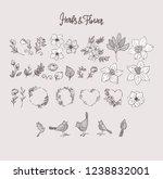 big set floral design elements  ... | Shutterstock .eps vector #1238832001