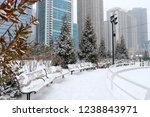 christmas in chicago. modern... | Shutterstock . vector #1238843971
