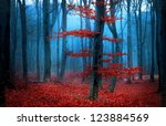 foggy day into the forest... | Shutterstock . vector #123884569