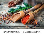 spices and condiments for food  | Shutterstock . vector #1238888344