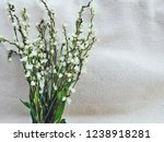 bouquet of flora. flower of... | Shutterstock . vector #1238918281