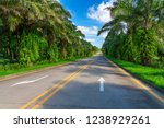a palm tree highway. | Shutterstock . vector #1238929261