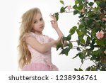 girl in a pink dress with roses. | Shutterstock . vector #1238936761