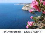 thasos  island in aegean sea ... | Shutterstock . vector #1238976844