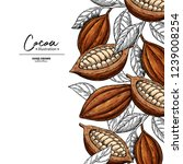 cocoa frame. vector superfood... | Shutterstock .eps vector #1239008254