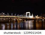 elizabeth bridge in the night.... | Shutterstock . vector #1239011434