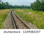 the railroad trails are round ... | Shutterstock . vector #1239083257