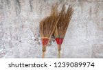 coconut broom leaning wall... | Shutterstock . vector #1239089974