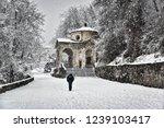 solitary man walking under the...   Shutterstock . vector #1239103417