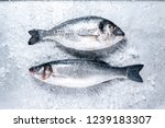 Fresh Seabass And Seabream Wit...