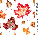 Seamless Pattern Of Autumn...
