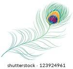 peacock plume | Shutterstock .eps vector #123924961