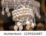 Sea Shells Gift.