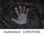 Close Up Human Hand Print On...