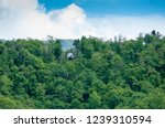 little white house in the... | Shutterstock . vector #1239310594