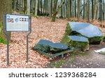 czech republic  marianske lazne ... | Shutterstock . vector #1239368284