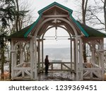 mescery s view point   building ... | Shutterstock . vector #1239369451