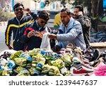 new dehli  india   february 19  ... | Shutterstock . vector #1239447637