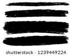 vector set of hand drawn brush... | Shutterstock .eps vector #1239449224