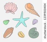 sea shells. icon set of sea... | Shutterstock .eps vector #1239503404