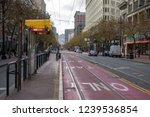 san francisco  california  usa  ... | Shutterstock . vector #1239536854