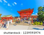 kyoto  japan   november 8  2018 ... | Shutterstock . vector #1239593974