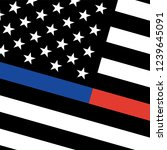 vector thin blue line   red... | Shutterstock .eps vector #1239645091