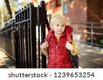 student near the school... | Shutterstock . vector #1239653254