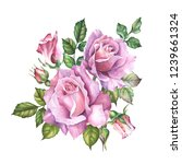 pink roses bouquet with leaves... | Shutterstock . vector #1239661324