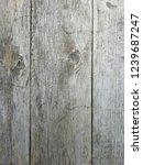 natural gray wood. door  wall  ... | Shutterstock . vector #1239687247