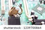 the padlock  in the motherboard ... | Shutterstock . vector #1239700864