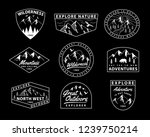 vector set of wilderness and... | Shutterstock .eps vector #1239750214