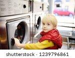 a little boy loads clothes into ... | Shutterstock . vector #1239796861