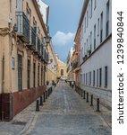 street in old town | Shutterstock . vector #1239840844