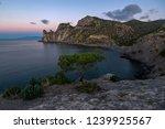 morning view of royal bay  novy ... | Shutterstock . vector #1239925567