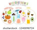 main food groups  ... | Shutterstock .eps vector #1240098724