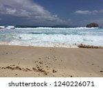 pointes des colibris  ... | Shutterstock . vector #1240226071