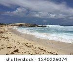 pointes des colibris  ... | Shutterstock . vector #1240226074