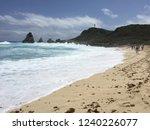pointes des colibris  ... | Shutterstock . vector #1240226077