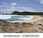pointes des colibris  ... | Shutterstock . vector #1240226101
