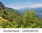 beautiful landscape of green...   Shutterstock . vector #1240230151