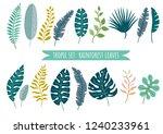 set of tropical leaves. vector... | Shutterstock .eps vector #1240233961