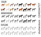 horse breeds color  monochrome... | Shutterstock .eps vector #1240266727