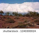 dead saguaro cactus in the... | Shutterstock . vector #1240300024