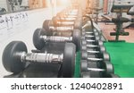 dumbbell the device in the... | Shutterstock . vector #1240402891
