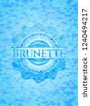 brunette sky blue emblem with... | Shutterstock .eps vector #1240494217